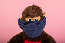 Soft Toy Monkey Wearing A Homemade Mouth Covering, Rose Backgrounds
