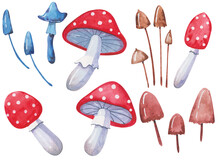Set Of Fly Agaric And Toadstool Mushrooms In Watercolor On A White Background