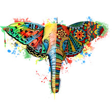 Butterfly,elephant Watercolor Illustration. Hand Drawn Digital Artwork