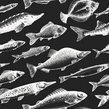Hand Drawn Fish Seamless Patte...