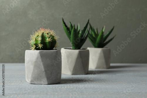 Fototapeta Artificial plants in ceramic flower pots on grey wooden table obraz