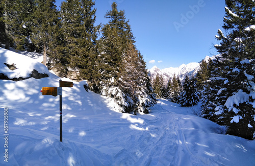 Mountain panorama of the ski area in the Lepontine Alps #357935980