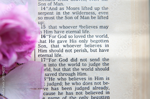Fotografia Bible passage with john 3:16 highlighted by the light