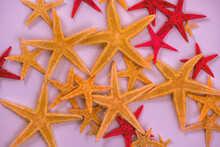 Heap Of Starfishes. Natural Co...