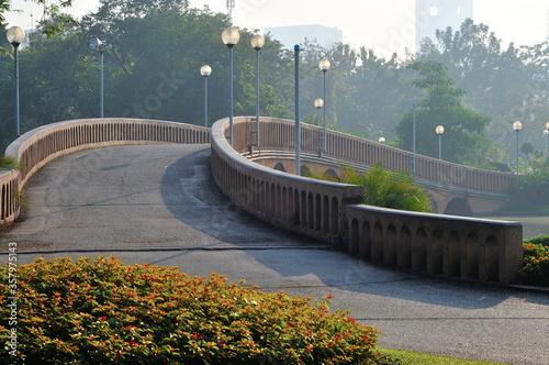 Misty Morning in a Park in Bangkok, Thailand Wallpaper Mural