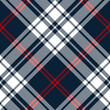 Classic blue red white plaid pattern vector. Seamless diagonal tartan check plaid for blanket, throw, duvet cover, or other modern autumn winter textile print.