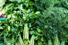Dill And Parsley. Useful Herbs...