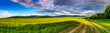 rural road through meadows away from civilization.panorama