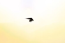 Low Angle Shot A Powered Hang Gliding Silhouette On A Yellow Sky Background