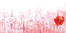 Field With Outline Poppy Flowe...