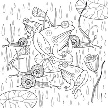 Frogs And Snails Under Rain Co...