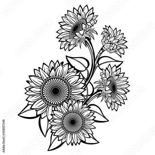 Sunflower #358057348