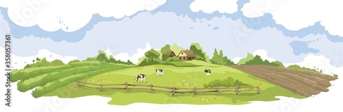 Fototapeta Abstract summer landscape -- farm fields / Vector illustration, rural view -- fields and meadows, old village, herd of cows obraz