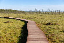 Ecological Hiking Trail In A N...