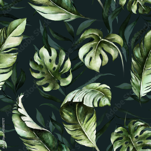 Foto Green tropical leaves on dark background
