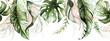 Leinwandbild Motiv Green and blush tropical leaves on white background. Watercolor hand painted seamless border. Floral tropic illustration. Jungle foliage pattern.