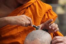 Shaving Hair In Ordination Cer...