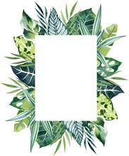 Tropical Leaves Watercolor Rec...