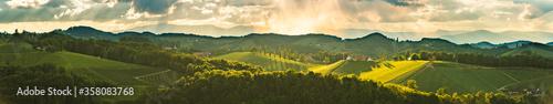 Fotografía Vineyards panorama Leibnitz area famous destination wine street in south Styria in summer