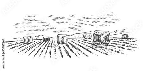 Hay bales in field simple engraving illustration/sketch Wallpaper Mural