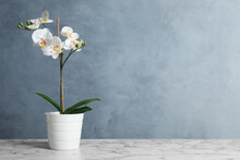 Artificial Orchid Plant In Flower Pot On White Marble Table. Space For Text