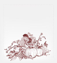 Fall Autumn Card Pumkin Leaves Frame Thanksgiving Day Sketch Style Hand Drawn Vector Illustration
