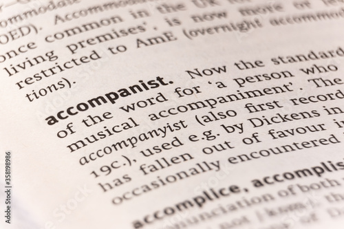 Photo Dictionary definition of the word accompanist