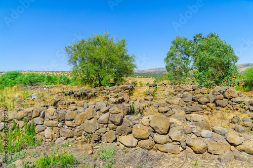 Photo Ancient site of Bethsaida (Beit Tzeida)