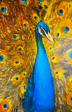 Elegant Peacock With A Beautiful, Pompous Tail And Feathers. The Bird Is Depicted Detailing, In Unusual Contrasting Colors, In Warm Yellow Shades And Turquoise. Oil Painting On Canvas.