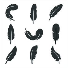 Feather Of Bird Graphic Icon. ...