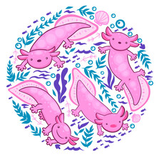 A Collection Of Axolotl And Underwater Elements On A White Background. Vector Graphics