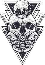 Skull Isolated Vector Illustra...