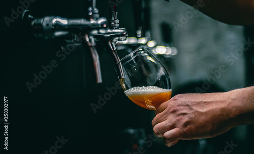bartender hand at beer tap pouring a draught beer in glass serving in a restaura Canvas Print