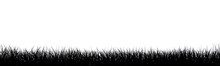 Meadow Vector Illustration
