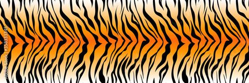 Fotografie, Tablou Pattern striped tiger or zebra skin print background, long banner animal fur, ha