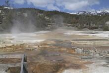 Upper Terrace Mammoth Hot Springs