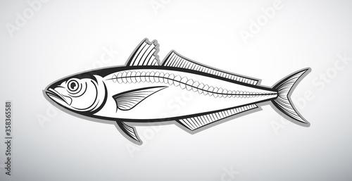 scad fish outline vector illustration Fototapeta