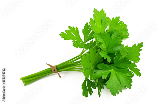 Parsley bunch Canvas-taulu