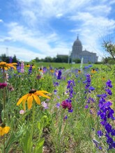 Oklahoma State Capitol In The Spring