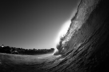 Black And White Photo Of A Bre...