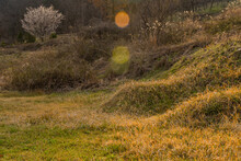 Unmarked Burial Mounds In Wild...