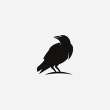 Crow On A White Background Logo Raven Templet