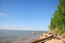 The Long Sandy Shore Of A Picturesque Lake With Dry Logs At The Edge Of A Birch Forest.