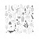 Fototapeta Dinusie - Set of different decorative elements with branches, flowers, animals and various objects.