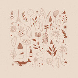 Fototapeta Dinusie - Set of different decorative elements with branches, flowers, animals and various objects drawing on beige background