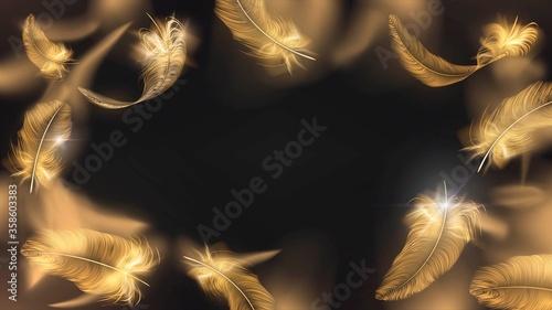 Fotografia, Obraz Frame of gold feathers on a black background, glamor and elegance