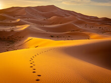Footsteps In The Sand At Sunrise In Sahara Desert, Morocco