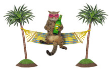 The Beige Cat In Pink Heart Shaped Sunglasses Is Drinking Beer In A Hammock That Hanging Between Palm Trees. White Background. Isolated.