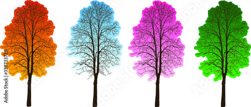 Fotografie, Obraz Four trees four seasons. Trees with crowns of different colors.