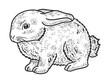 little rabbit sketch engraving vector illustration. T-shirt apparel print design. Scratch board imitation. Black and white hand drawn image.